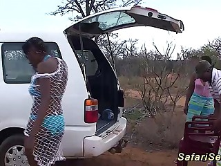 naughty african safari coition bang-out