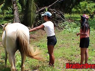HEATHERDEEP.COM Teenager Wailing vs Pony district flannel